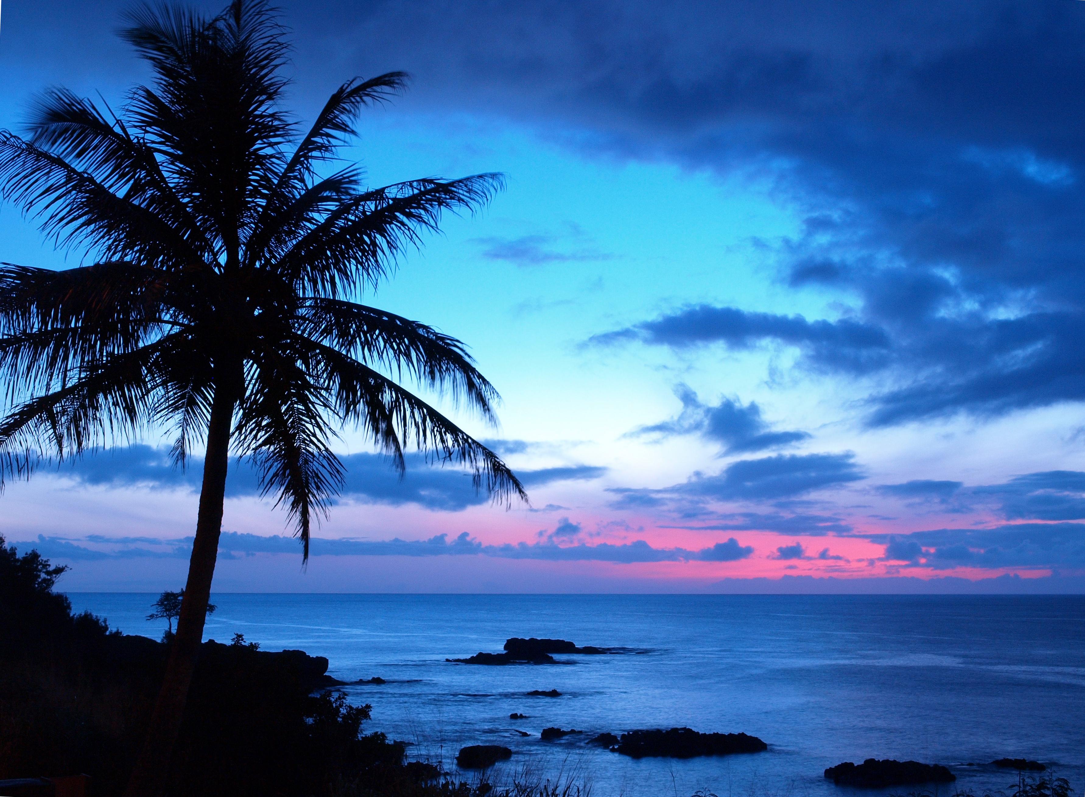 何度でも行きたい ハワイの美しすぎる高画質な画像 壁紙 写真